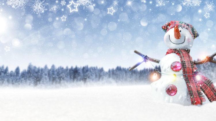 Frohe Weihnachten * Merry Christmas * Buon Natale * Joyeux Noel *